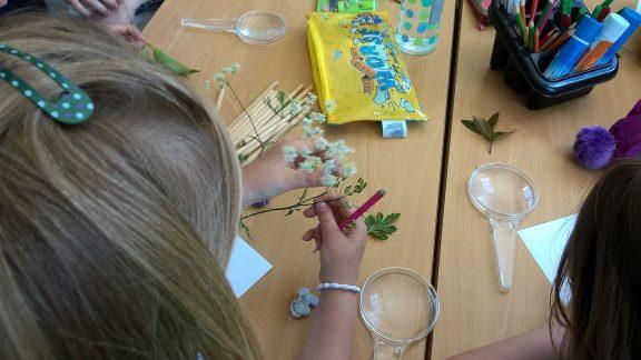 a child cuts arts materials during a flying shop of imagination schools workshop